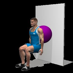 Calentar, estirar y mejorar el tren inferior: squat iso fitball
