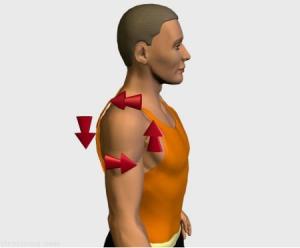 Calentar, estirar y mejorar el tren inferior sin lesiones:Calentar hombros